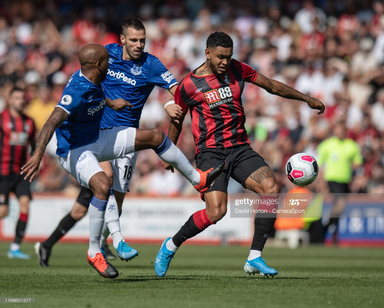 Everton vs Bournemouth match preview: Bournemouth hope for final-day drama