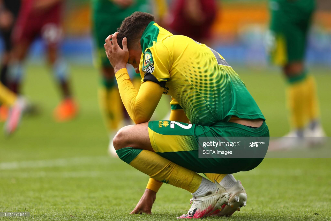 Norwich City season review: Canaries fail to fly high as Championship beckons