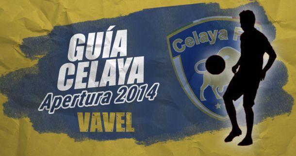 Guía VAVEL Apertura 2014: Toros de Celaya