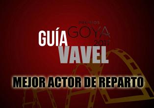 Camino a los Goya 2017: Mejor Actor de Reparto