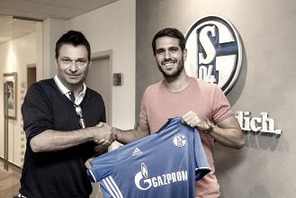 El Schalke 04 se acaba llevando a Pablo Insua
