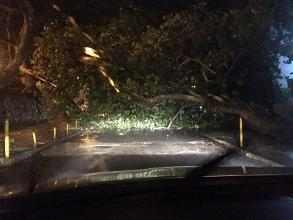 Chuva faz Rio de Janeiro entrar em estágio de alerta: acompanhe ao vivo