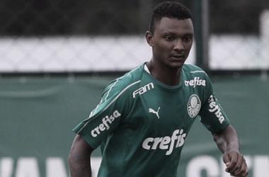 (Foto: Divulgação/ SE Palmeiras)
