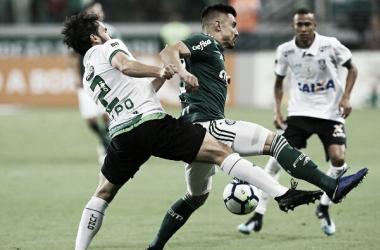 Palmeiras se tornará campeão caso vença o Vasco na próxima rodada (Divulgação / SE Palmeiras)