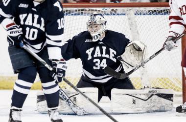 YALE GOALKEEPER | NHL.COM