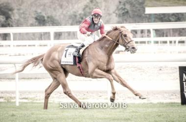 El jockey de Another Day of Sun, Borja Fayos, celebrando el triunfo en la Poule de Potros - Premio Cimera metros antes de pasar por meta. FUENTE: Salva Maroto - @colosseo3