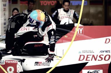 Fernando Alonso. Foto: WEC