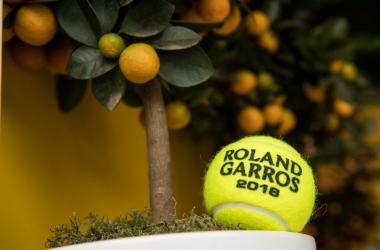 Roland Garros, Stephens all'assalto della Halep