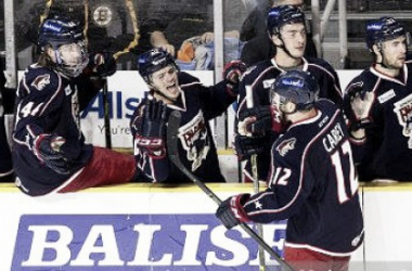Greg Carey #12 of the Springfield Falcons celebrates his goal with his teammates during an American Hockey League game against the Providence Bruins at the Dunkin' Donuts Center on November 1, 2015 in Providence, Rhode Island.