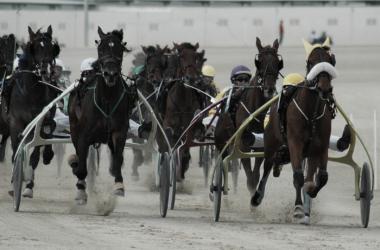 Una de las carreras disputadas en Son Pardo | Foto: Hipódromo de Son Pardo