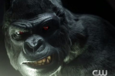 """The Flash: """"Grodd Lives"""" Review"""