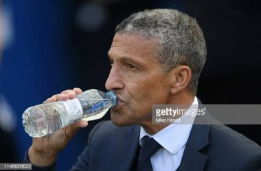 Chris Hughton in the dugout on the final game of the season against Manchester City. Image courtesy of Mike Hewitt on Getty images.