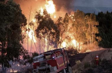 La Sierra de Huelva arrasada por las llamas