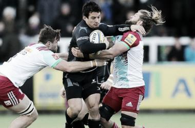 Foto: el hombre surgido en Los Matreros, en acción con la camiseta de Newcastle Falcons. ¿El rival de turno? Harlequins. Crédito: Talking Rugby Union