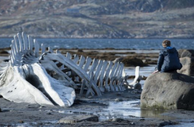Foto (sin efecto): fotograma de la película tomado de variety.com