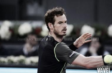 ATP Washington - Il tabellone maschile