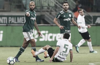 Divulgação SE Palmeiras