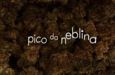 (Foto: Divulgação/ O2 Filmes)