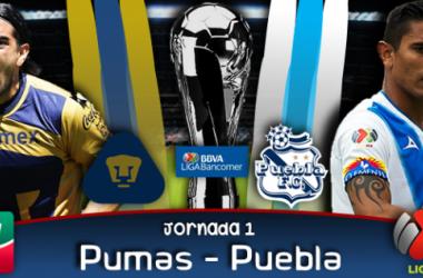 Resultado Pumas - Puebla en Liga MX 2014 (1-1)