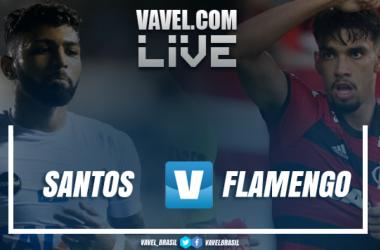 Resultado Santos x Flamengo pelo Campeonato Brasileiro 2018 (1-1)