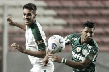 Foto: Divulgação / SE Palmeiras