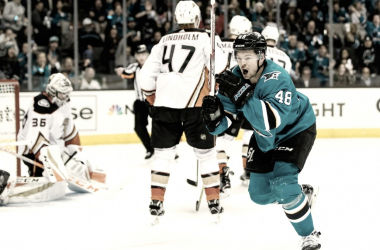 Tomas Hertl San Jose Sharks (Photo Courtesy of Fear the Fin)