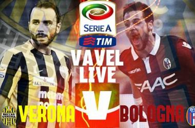 Live Hellas Verona - Bologna in Serie A 2015/16 (0-2): sblocca Giaccherini, raddoppia Donsah