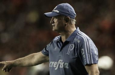 Felipão destaca equilíbrio do Palmeiras após vitória contra Sport