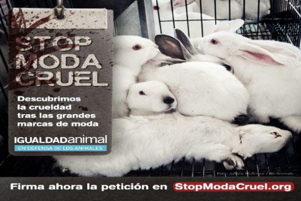 Igualdad Animal en contra de las grandes firmas de moda