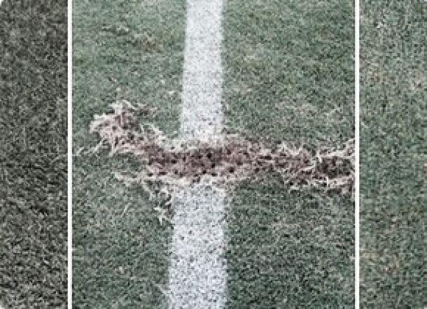 Hábito inusitado de Diego Cavalieri obriga manutenção a fazer reparos no gramado do Maracanã