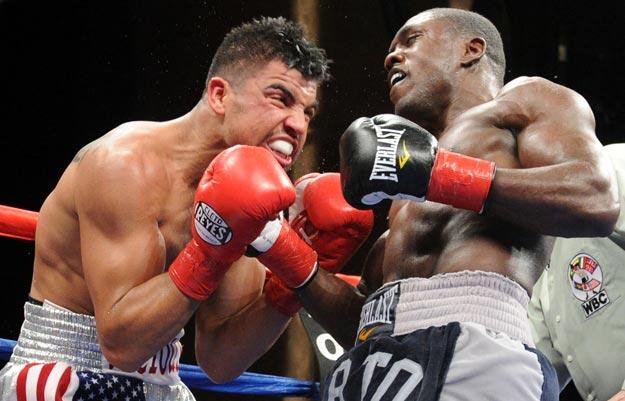 Doce peleas para el 2012