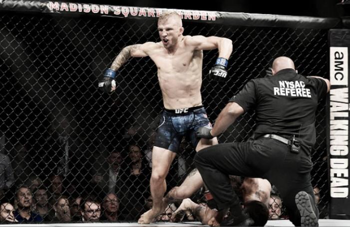 TJ Dillashaw surpreende, nocauteia Garbrandt e reconquista cinturão dos galos no UFC 217