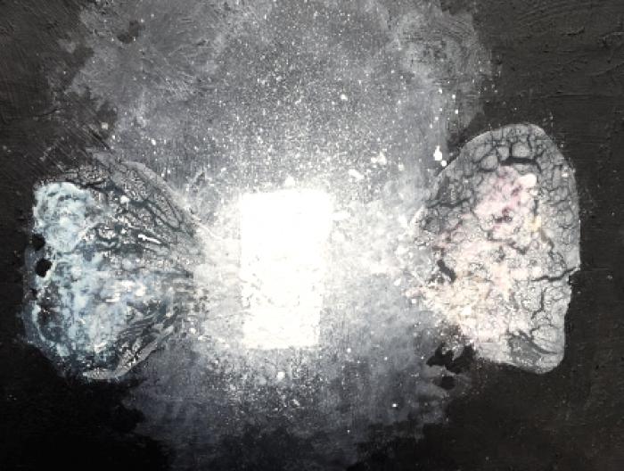 Exposición 'De la luz', por el Dr. Luis Vecilla