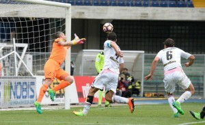 L'afflitto Palermo prepara la sfida al Genoa