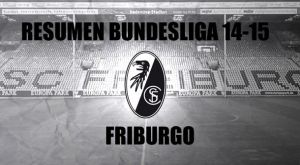 Resumen temporada2014/2015 delFriburgo: crónica de undescenso anunciado