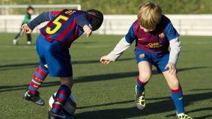 30.000 niños en las FCBEscoles