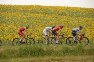 Tour de France: si decide il podio prima della passerella finale