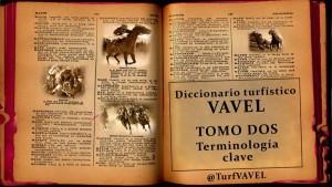 Diccionario turfístico: terminología clave