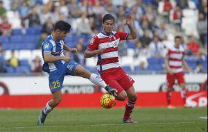 Espanyol 1-1 Granada: puntuaciones del Espanyol, jornada 10 de la Liga BBVA