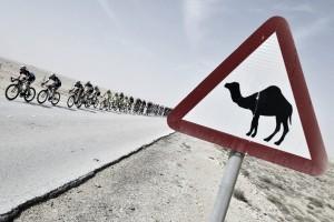 Un posible Mundial de cien kilómetros