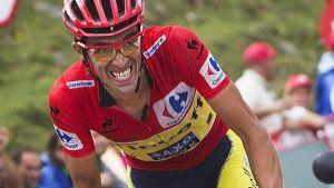 Vuelta a Espana Stage 16: Contador confirms overall credentials