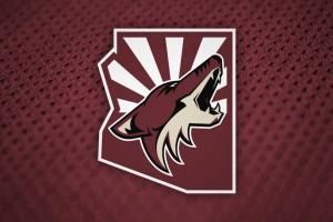 Arizona Coyotes look forward to being a playoff team next season