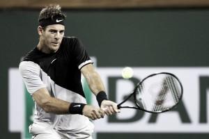 ATP Indian Wells: Juan Martin del Potro blasts his way past David Ferrer and into the last 16