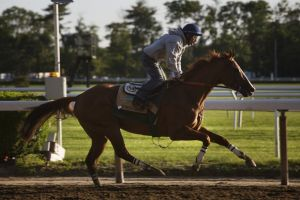 2014 Belmont Stakes: California Chrome Draws Post 2