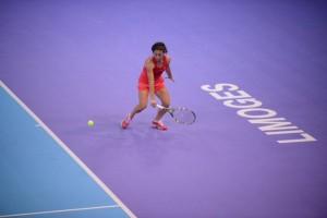 WTA Limoges, Schiavone in semifinale