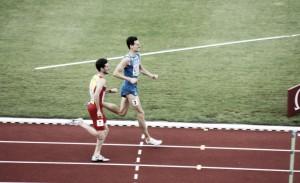 España se lleva ocho medallas y 20 finalistas de Ámsterdam