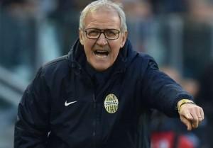 """Hellas Verona, Delneri: """"I risultati danno forza e morale. Giochiamo con aggressività ed intensità"""""""