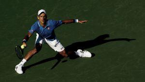 Miami, Djokovic col brivido. Murray fa 500, fuori Raonic