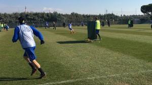 Chievo Verona: dubbi tattici per Maran in vista del Cagliari