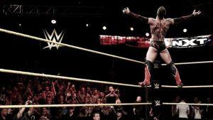 NXT: A breeding ground for success or failure?